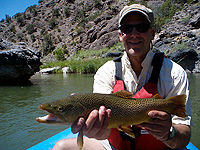 Bruce with brown trout on the gunnison river