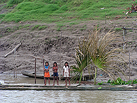 Amazon River Girls